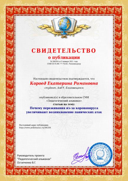 Свидетельство о публикации № 206204