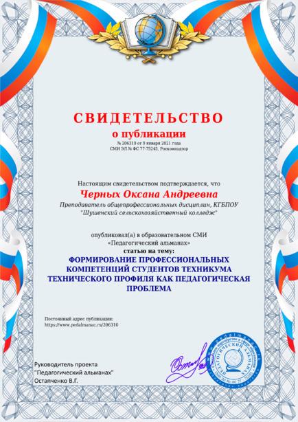 Свидетельство о публикации № 206310