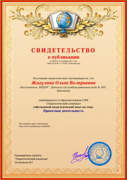Свидетельство о публикации № 206421