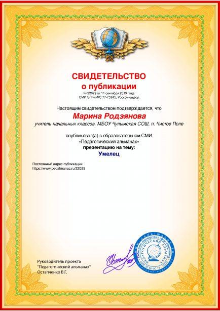 Свидетельство о публикации № 22029