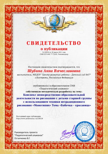Свидетельство о публикации № 238524