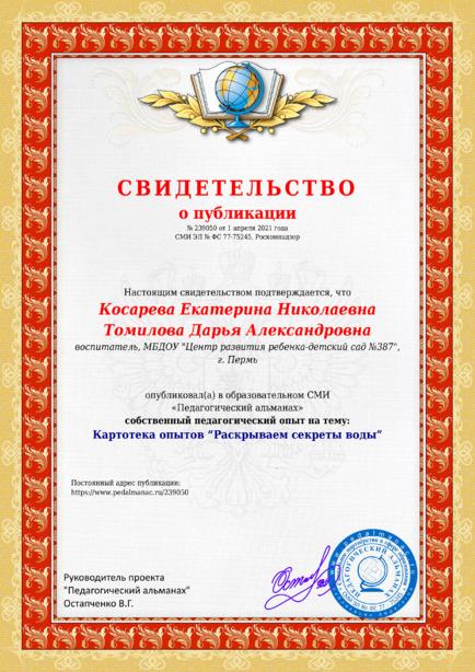 Свидетельство о публикации № 239050